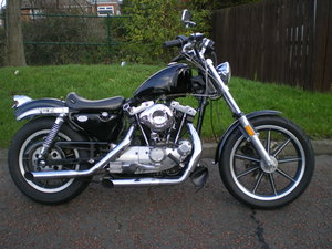 Harley Davidson XLS 1000 Sportster Last of the Ironheads!