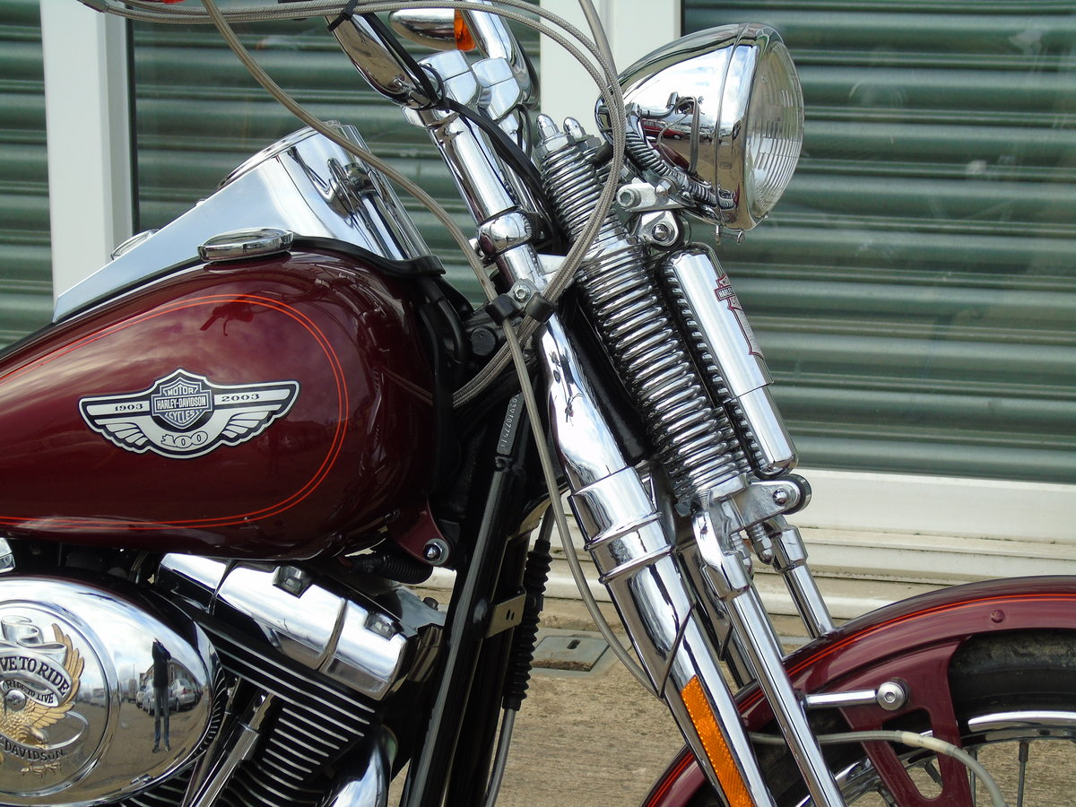 2003 Harley Davidson FXSTS Softail Springer Anniversary Edt For Sale (picture 3 of 6)
