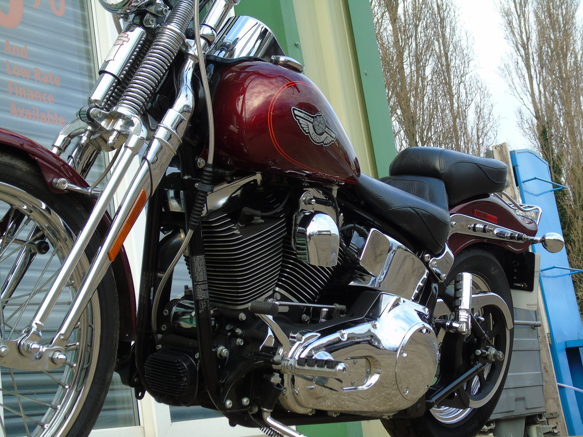 2003 Harley Davidson FXSTS Softail Springer Anniversary Edt For Sale (picture 4 of 6)