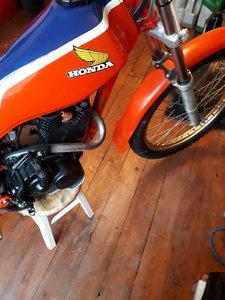1983 Honda TLR200