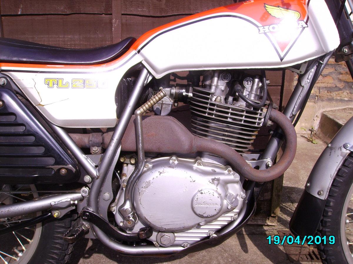 1975 Honda TL250 trials SOLD (picture 2 of 6)