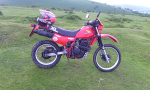 1985 HONDA XL600RE RECENT FULL REBUILD READY TO GO.