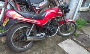 1986 Honda cbx250rs  For Sale