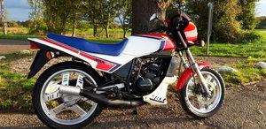 1984 Honda MBX125 SOLD