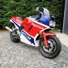 1987 Super Rare Honda VF1000R For Sale (picture 6 of 6)