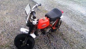1974 Honda Mini Trail