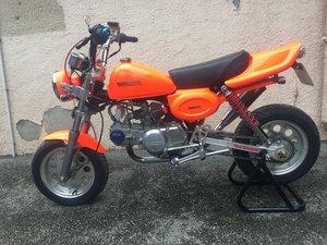 Picture of 2004 Honda Custom Monkey Bike