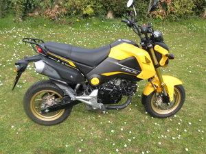 2015 Honda MSX 125 Grom Yellow