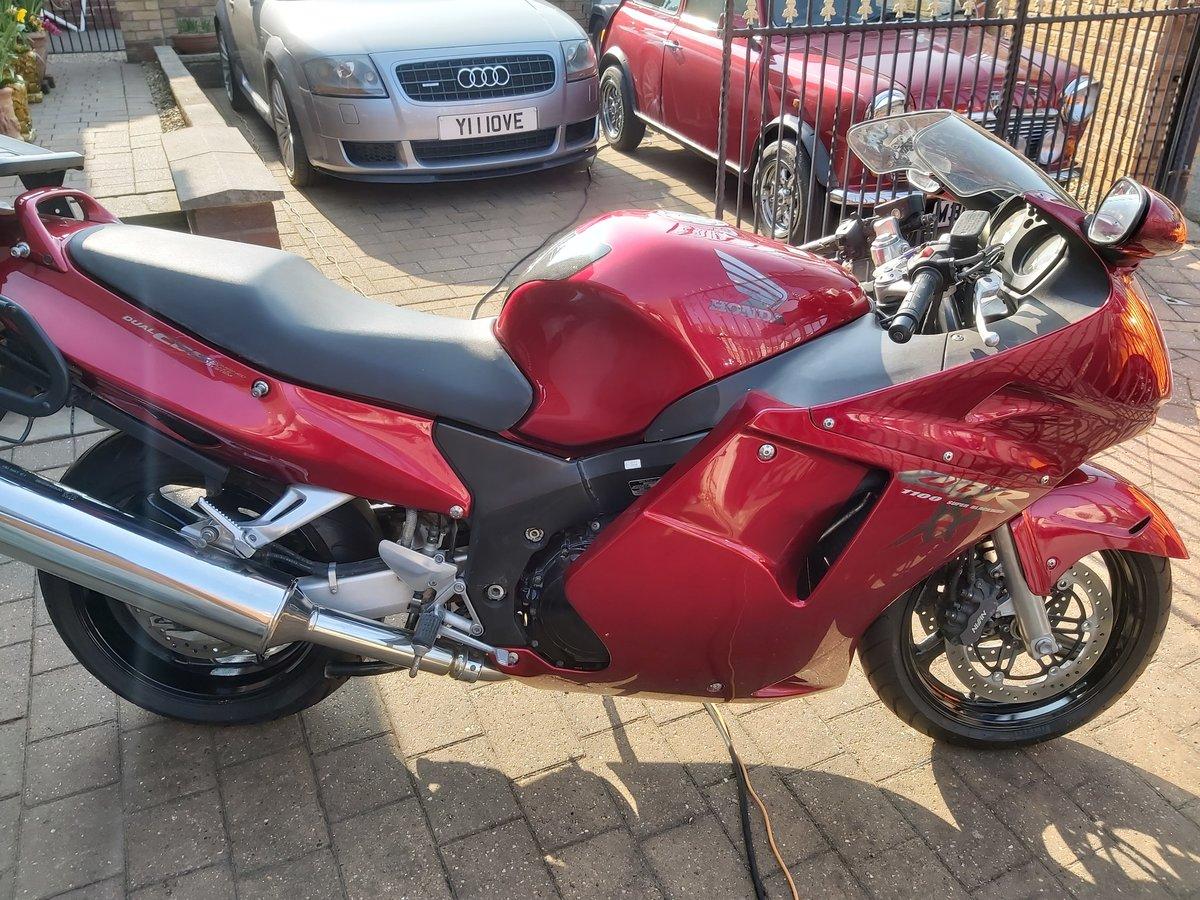 1998 Honda cbr1100xx super blackbird For Sale (picture 1 of 6)