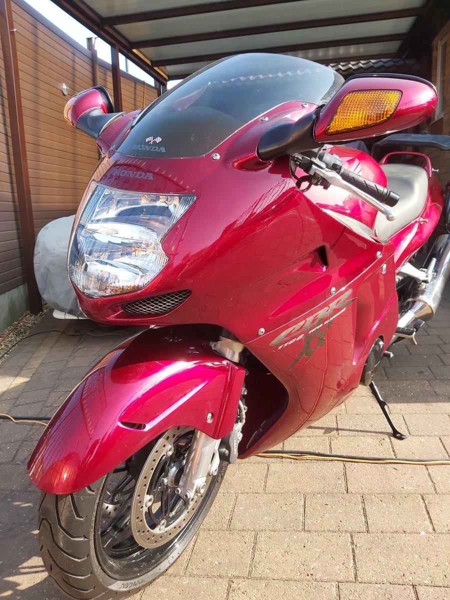 1998 Honda cbr1100xx super blackbird For Sale (picture 3 of 6)