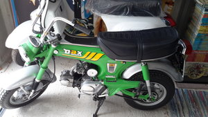 Honda dax sort after green colour
