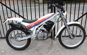 Picture of 1986 Honda TLR 250 cc Trials Bike Road Registered  For Sale
