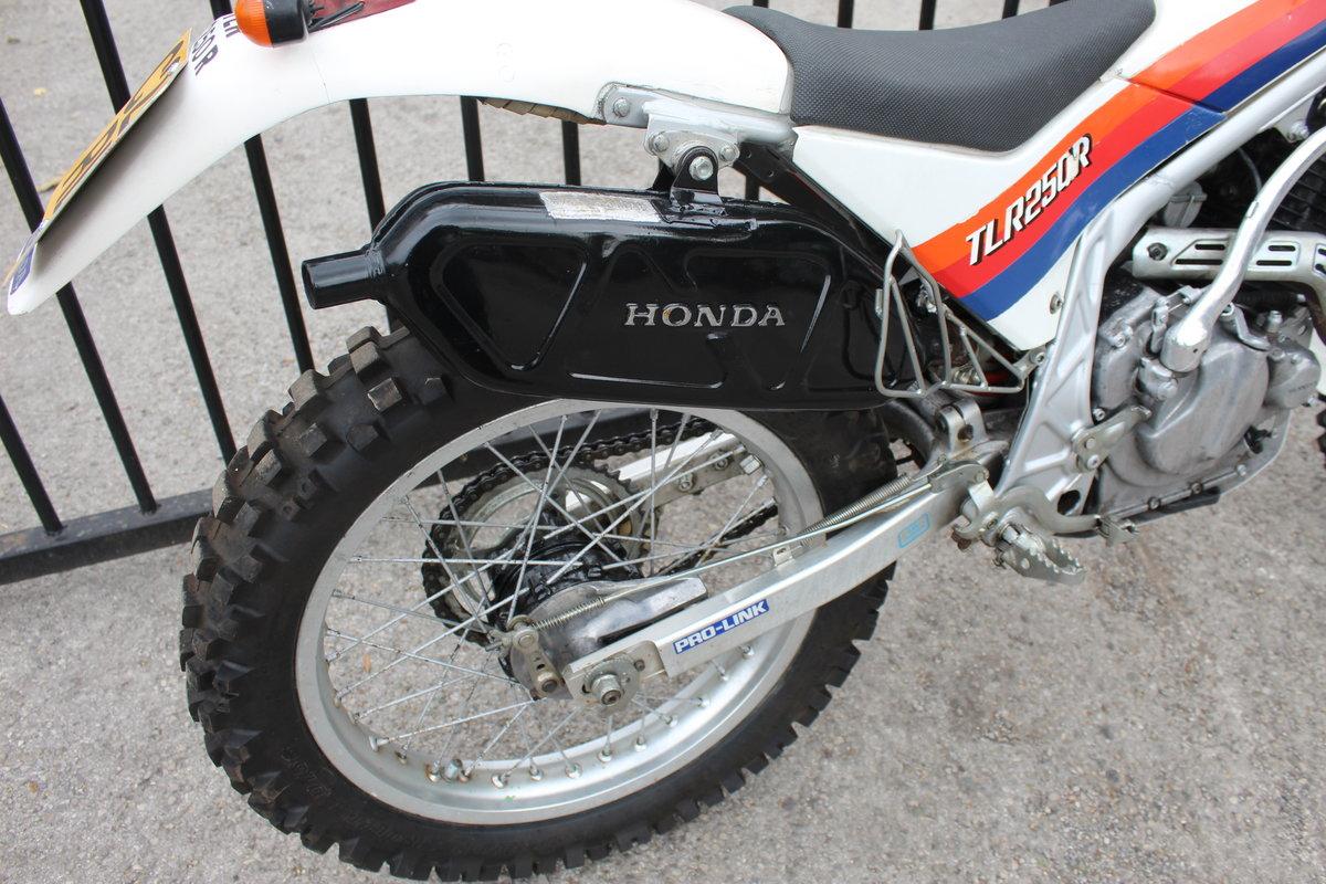 1986 Honda TLR 250 cc Trials Bike Road Registered SOLD (picture 2 of 6)
