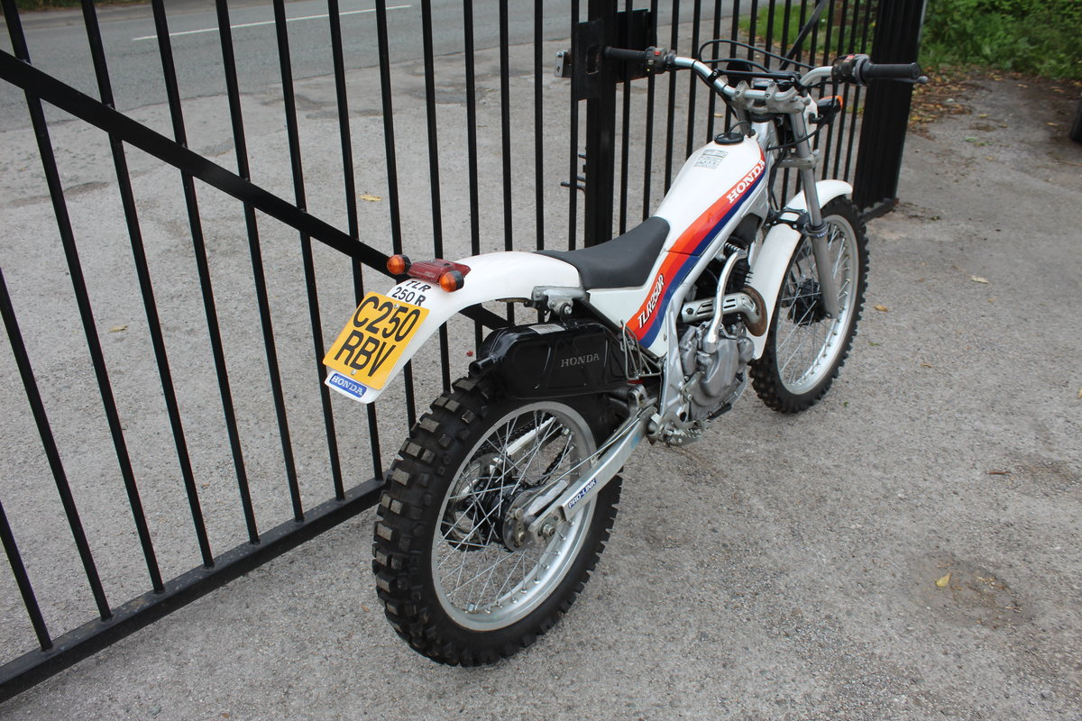 1986 Honda TLR 250 cc Trials Bike Road Registered SOLD (picture 3 of 6)