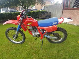 Picture of 1980 Honda XR200A  Enduro