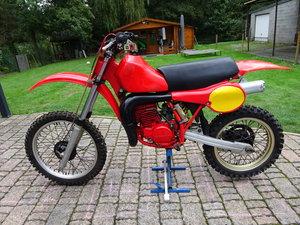 1981 CR 450