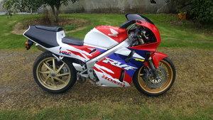 1994 Honda RVF400 NC35 Project Bike