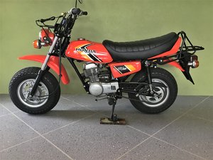 Picture of 1981 Honda CY50 Mini Bike SOLD