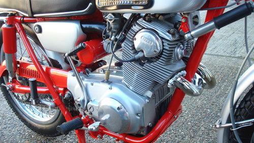 Honda CL77 SCRAMBLER 305 1966-D **6711 MILES** SOLD (picture 3 of 6)