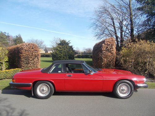 1986 MAJOR RESTORATION TRULY BEAUTIFUL  V12 . For Sale (picture 3 of 6)