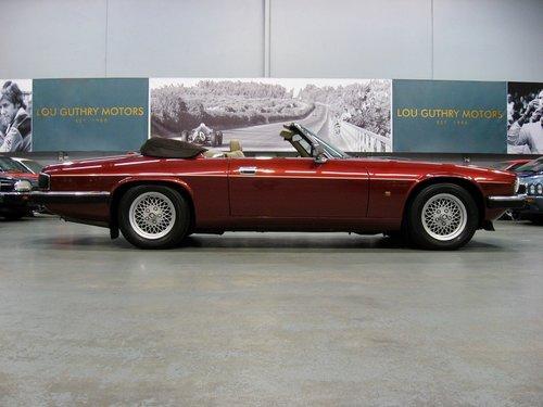 1993 Jaguar XJS 5.3L V12 Convertible For Sale (picture 1 of 6)