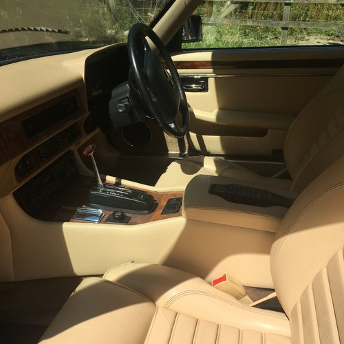 1991 Immaculate Jaguar Xjs Massive price drop. For Sale (picture 4 of 6)