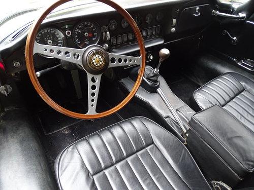 1968 Jaguar E-TYPE 1.5 Full restoration concourse. For Sale (picture 4 of 6)
