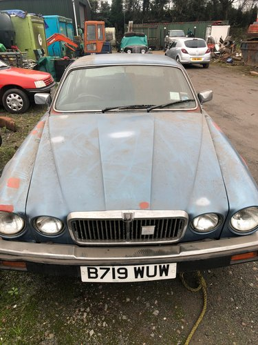 1984 1985 Jaguar 4.2 XJ6, 0NLY 25379 MILES For Sale (picture 1 of 6)