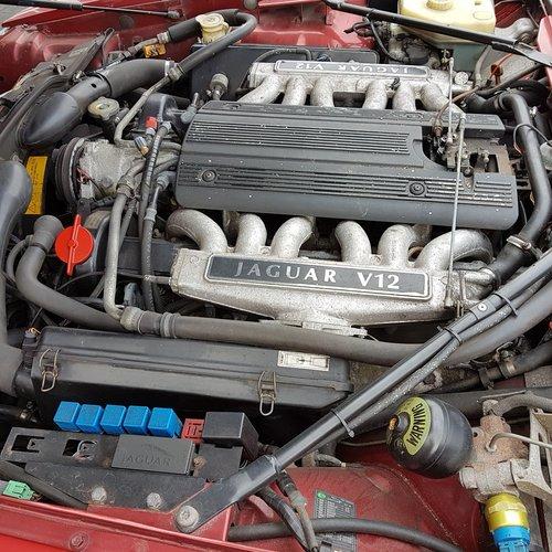 JAGUAR V12 1994 For Sale (picture 4 of 6)