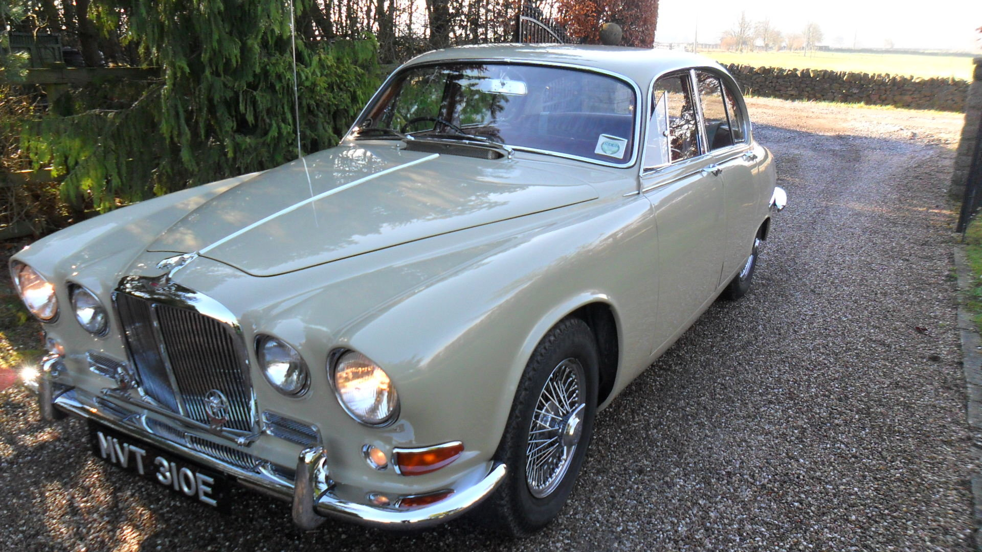 1967 Former concourse tropy winner For Sale (picture 4 of 6)