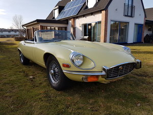 1973 Primerose E-type -73 For Sale