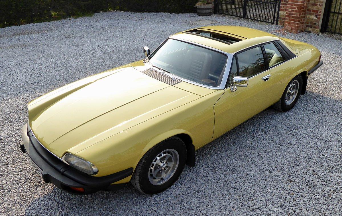 1979 Jaguar XJS Pre HE ( 2 previous owners 35,000 miles ...