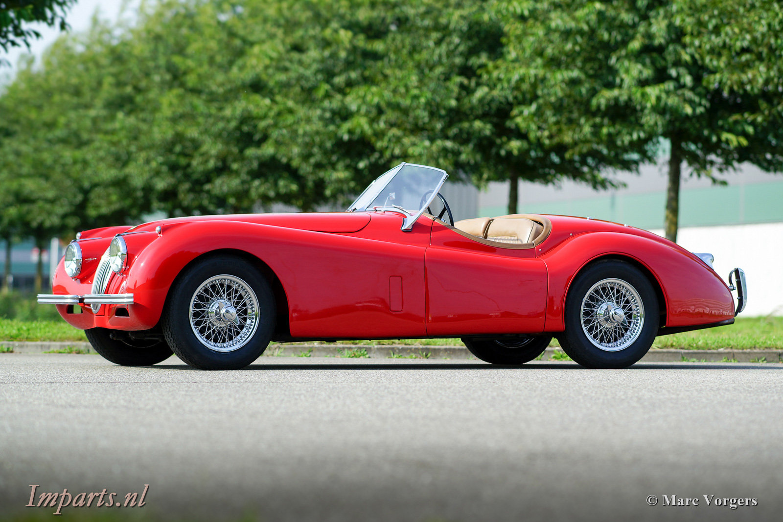 Excellent Jaguar XK120 SE OTS 1954 LHD For Sale (picture 1 of 6)