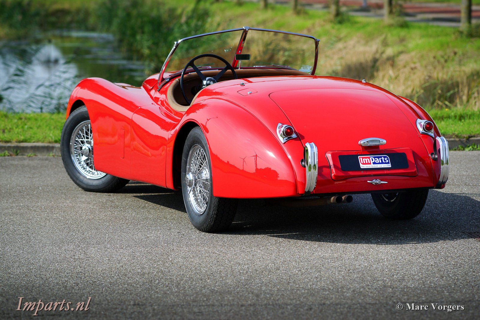 Excellent Jaguar XK120 SE OTS 1954 LHD For Sale (picture 6 of 6)