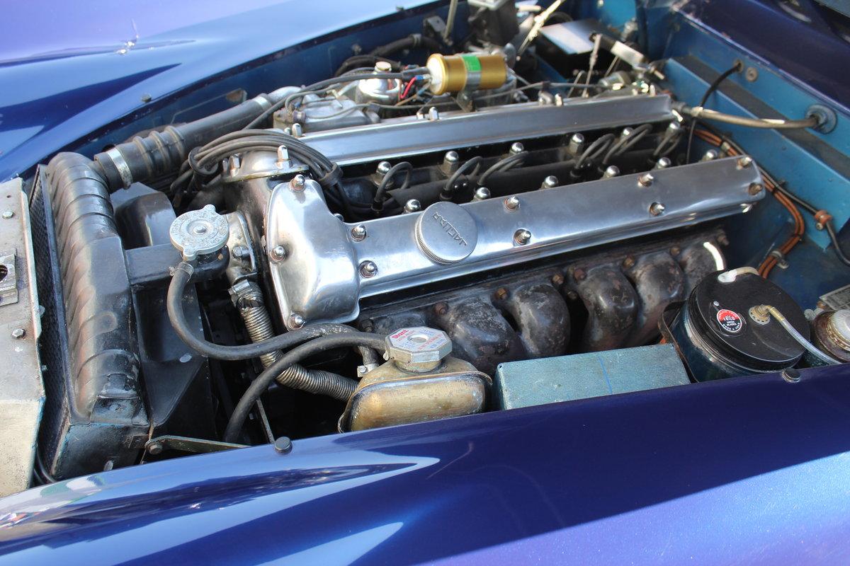 1959 Jaguar XK150 3.4 FHC For Sale (picture 6 of 6)