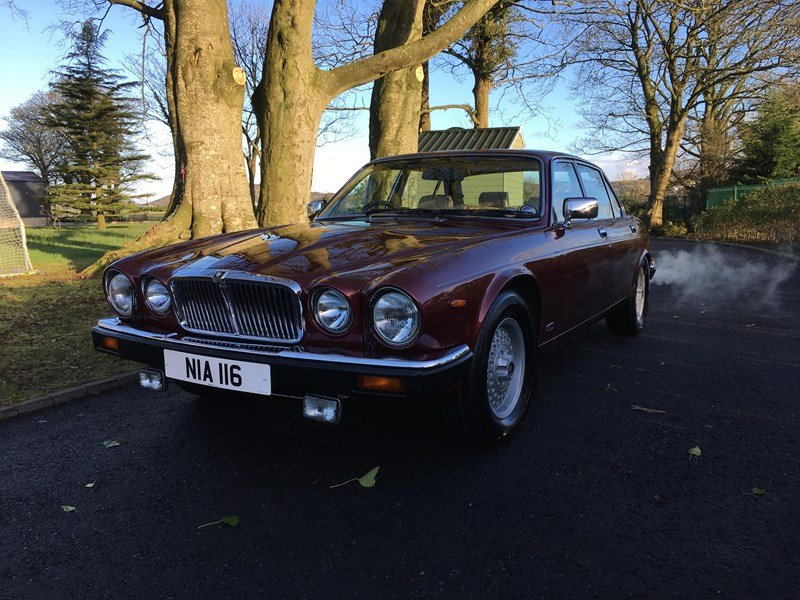 1991 Xj12 For Sale (picture 1 of 5)