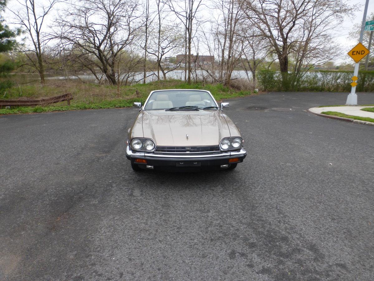 1989 Jaguar XJS V12 Convt A Driver - For Sale (picture 2 of 6)