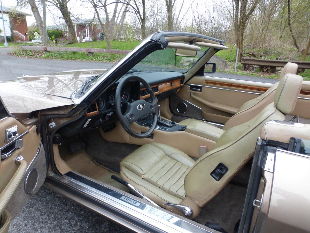 1989 Jaguar XJS V12 Convt A Driver - For Sale (picture 5 of 6)
