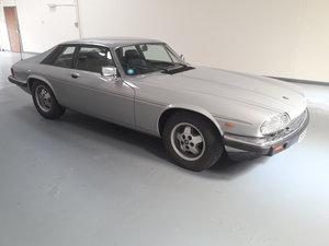 Jaguar XJS HE V12 1984 For Sale