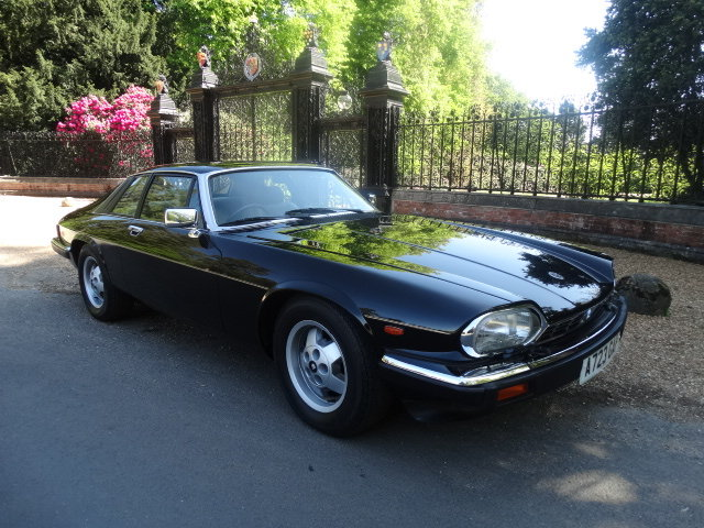 1984 JAGUAR XJS V12 HE ONLY 41,000 MILES For Sale (picture 1 of 6)