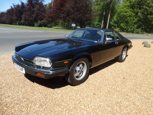 1984 JAGUAR XJS V12 HE ONLY 41,000 MILES For Sale (picture 2 of 6)