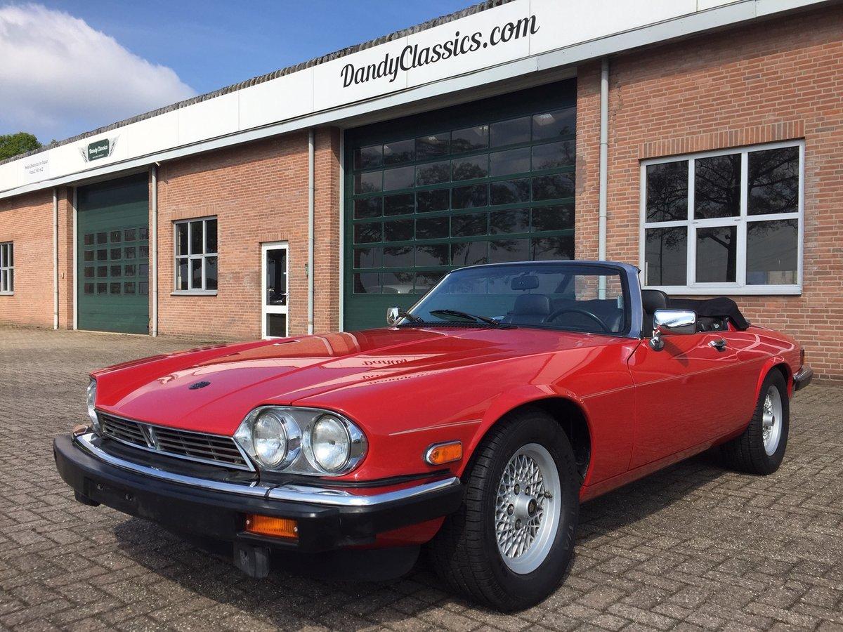 1989 Jaguar XJS V12 convertible | LHD | 46.000 mls For Sale (picture 1 of 6)