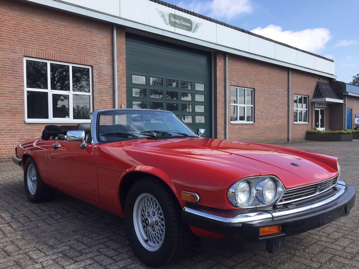 1989 Jaguar XJS V12 convertible | LHD | 46.000 mls For Sale (picture 2 of 6)