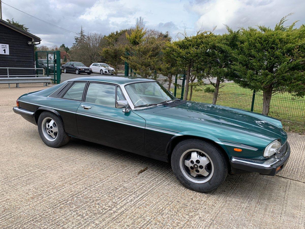 1984 Jaguar XJS V12 SOLD (picture 1 of 6)