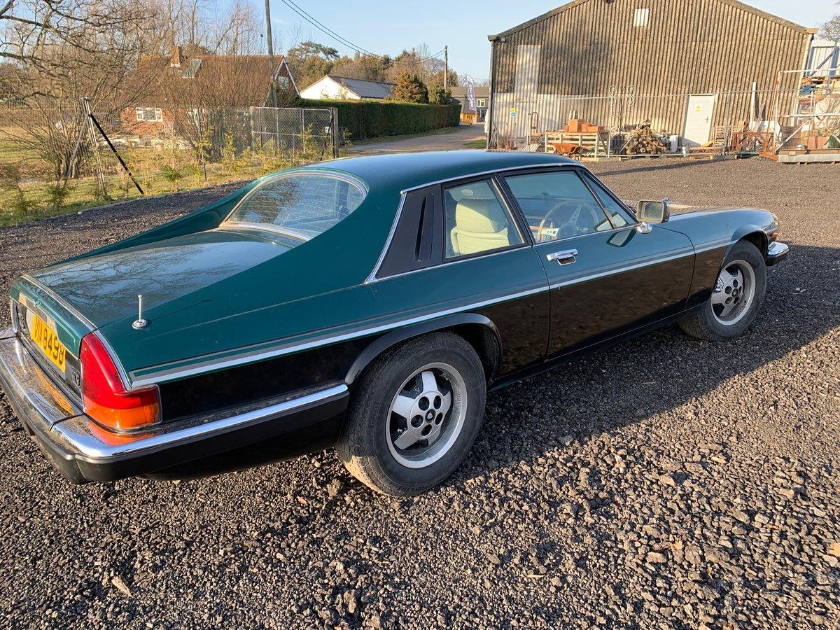 1984 Jaguar XJS V12 SOLD (picture 4 of 6)