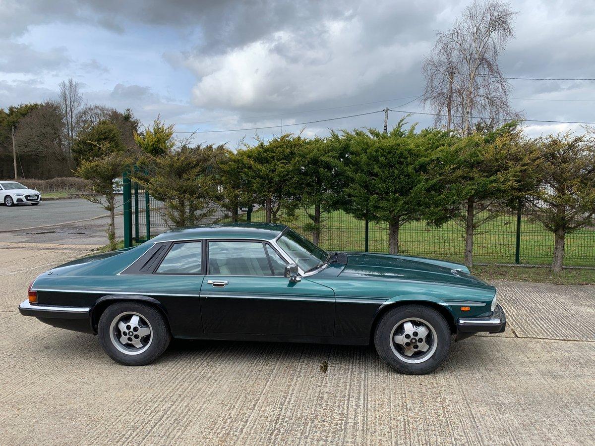 1984 Jaguar XJS V12 SOLD (picture 5 of 6)