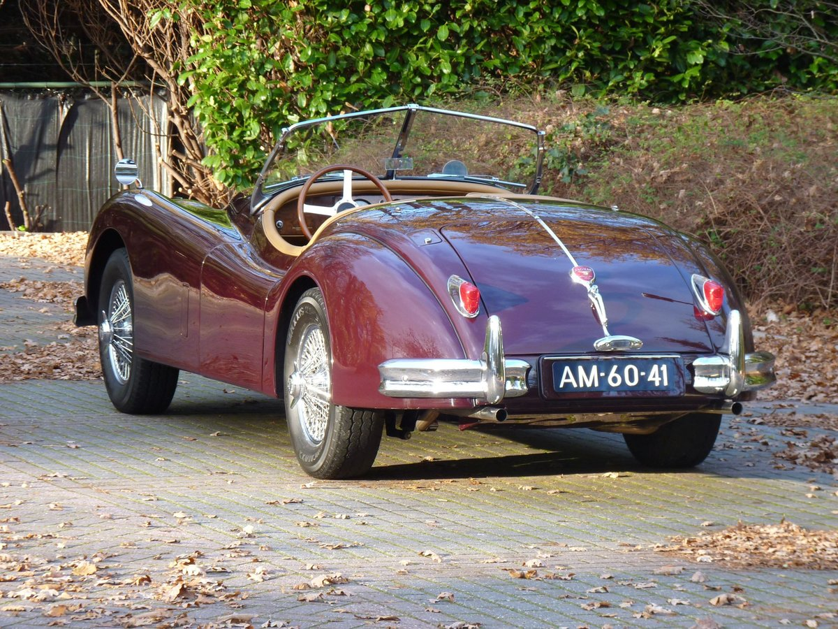 1956 Beautiful restored Jaguar XK140 OTS For Sale (picture 6 of 6)