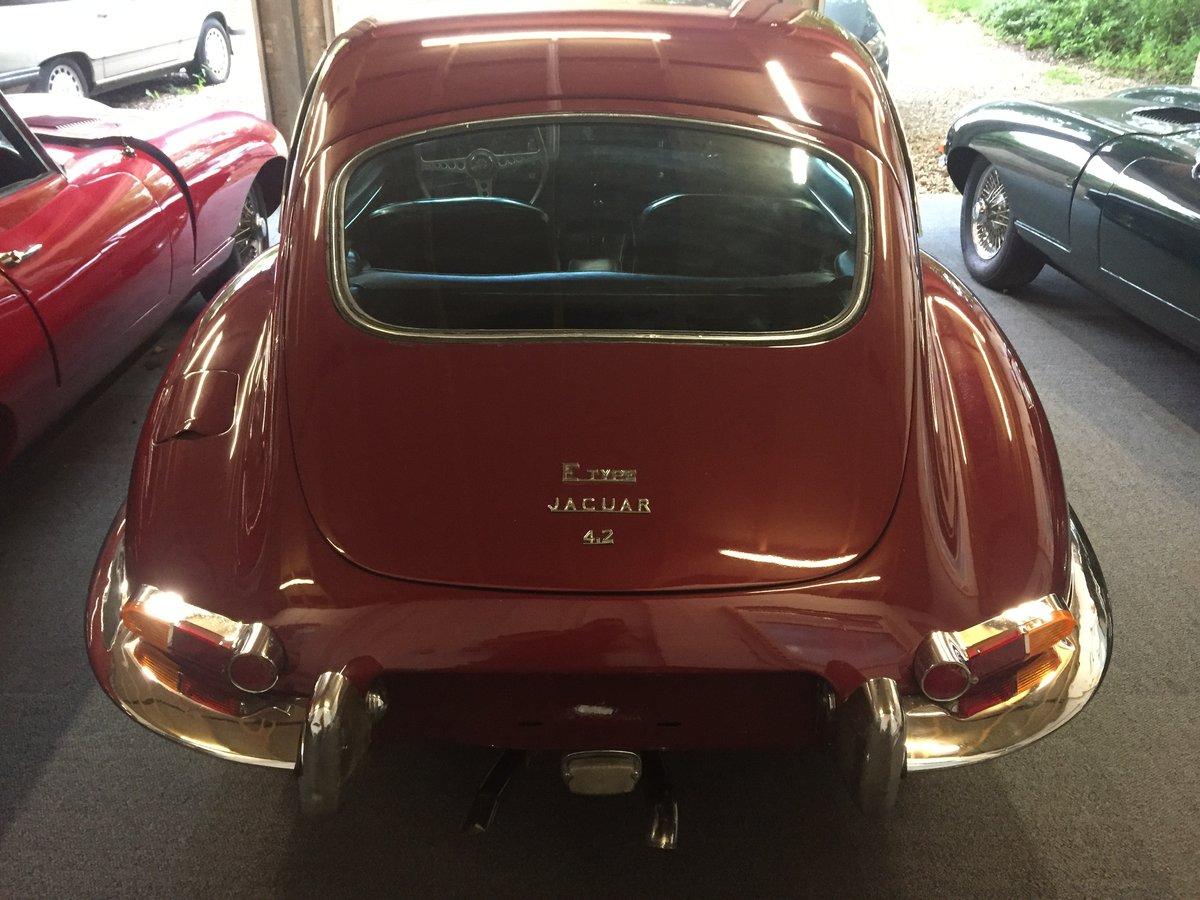 1966 Jaguar Etype S1 2+2 For Sale (picture 2 of 6)