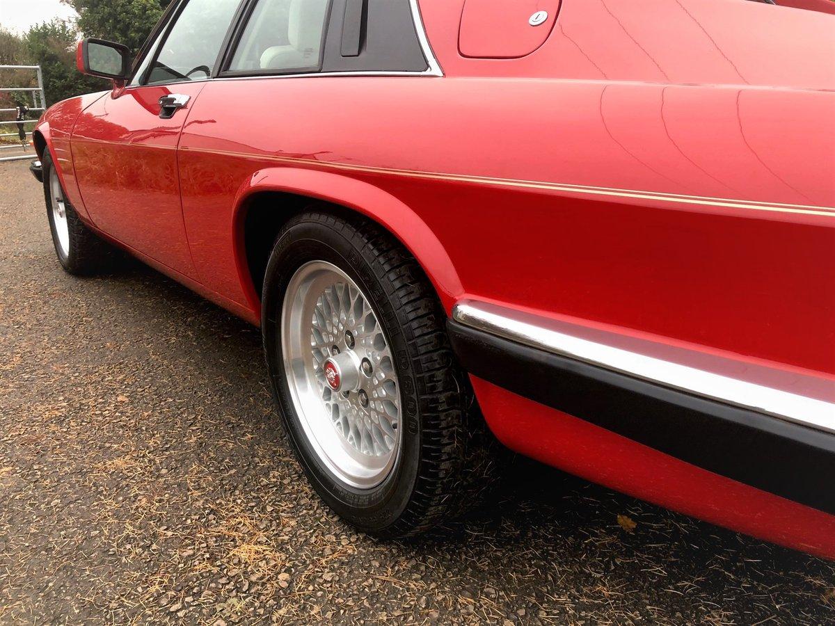 1991 Jaguar XJS Le Mans Limited Edition No 206 of 280 Built For Sale (picture 4 of 6)