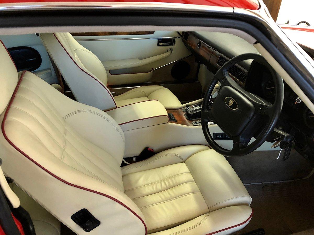 1991 Jaguar XJS Le Mans Limited Edition No 206 of 280 Built For Sale (picture 6 of 6)